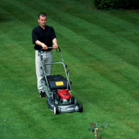 Lawn Mowing Shepherds Bush
