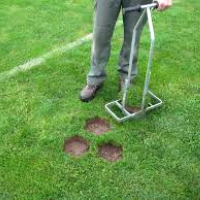 Lawn Repair Shepherds Bush