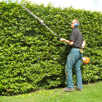 Garden Maintenance Shepherds Bush